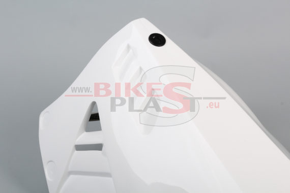 APRILIA RSV4 2015- 4. lower part (6)